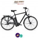 Raleigh DOVER 8 HS 17Ah, hauteur du cadre 50cm de couleur noir avec système d'assistance IMPULSE 2.0-Vélo électrique pour Hommes