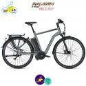Raleigh STOKER S10 EVO 17,5Ah (45km/h), cadre 50cm avec système d'assistance IMPULSE EVO SPEED-Vélo électrique pour Hommes