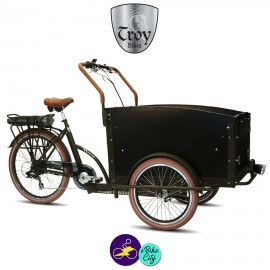 TROY-TRIPORTEUR-E 13Ah avec système d'assistance 8 FUN 36V/250W-Vélo électrique 3 roues