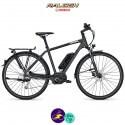 Raleigh STOKER B9 ALIVIO 13,4Ah, hauteur du cadre 55cm avec système d'assistance BOSCH PERFORMANCE-Vélo électrique pour Hommes