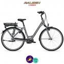"""Raleigh CARDIFF B8 13,4Ah, roues 26"""" et hauteur du cadre 45cm avec système d'assistance BOSCH ACTIVE-Vélo électrique pour Femmes"""