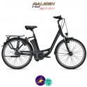 Raleigh DOVER 8 HS 17Ah, hauteur du cadre 50cm de couleur noir avec système d'assistance IMPULSE 2.0-Vélo électrique pour Femmes