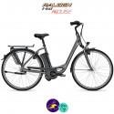 Raleigh DOVER 7 HS 14,5Ah, hauteur du cadre 50cm gris carbone avec système IMPULSE 2.0-Vélo électrique pour Femmes