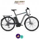 Raleigh STOKER 9 EVO 13Ah, cadre 55cm de couleur gris mat avec système d'assistance IMPULSE EVO-Vélo électrique pour Hommes