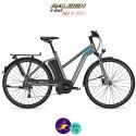 Raleigh STOKER 9 EVO 13Ah, cadre 55cm de couleur gris mat avec système d'assistance IMPULSE EVO-Vélo électrique pour Femmes