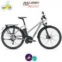 Raleigh STOKER S10 EVO 17,5Ah (45km/h), cadre de 55cm avec système d'assistance IMPULSE EVO SPEED-Vélo électrique pour Femmes